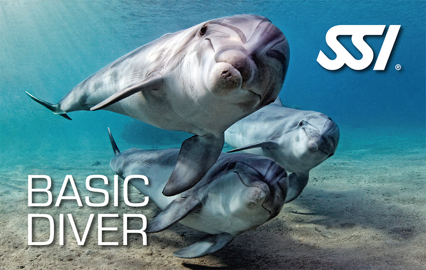 SSI Basic Diver