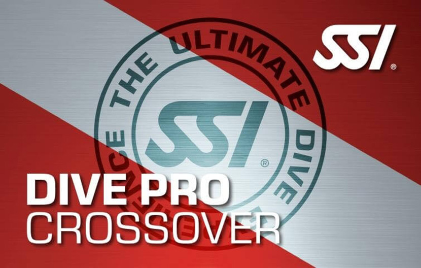SSI Professional XOVER